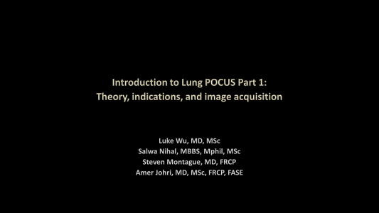 LUS Part 1 - Theory, indications and image acquisition