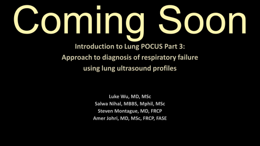LUS Part 3 - Approach to diagnosis of respiratory failure using LUS profiles - coming soon