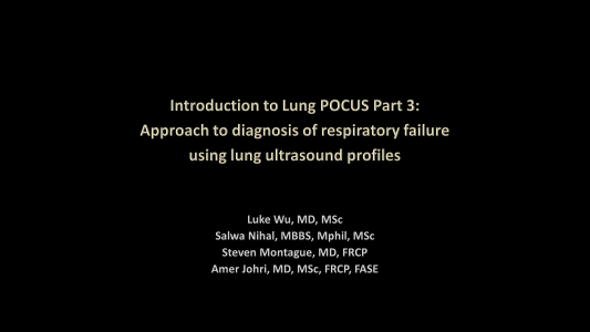LUS Part 3 - Approach to diagnosis of respiratory failure using LUS profiles
